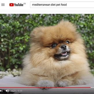 Comida para perros Mediterranean diet