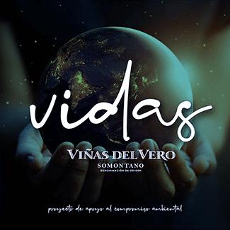 Proyecto VIDas